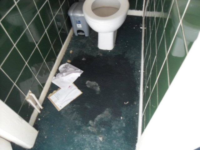 Toilet - before cleaning services