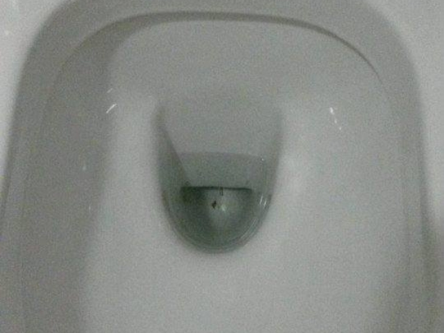 Toilet bowl - after cleaning services