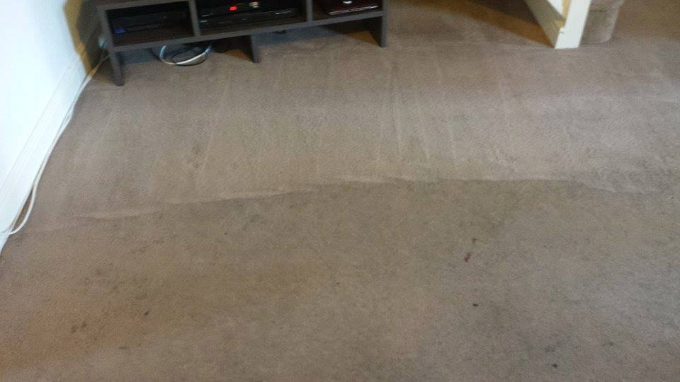 Carpet before and after cleaning services